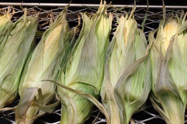 smoked_corn